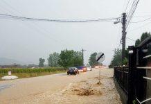 Borod inundații