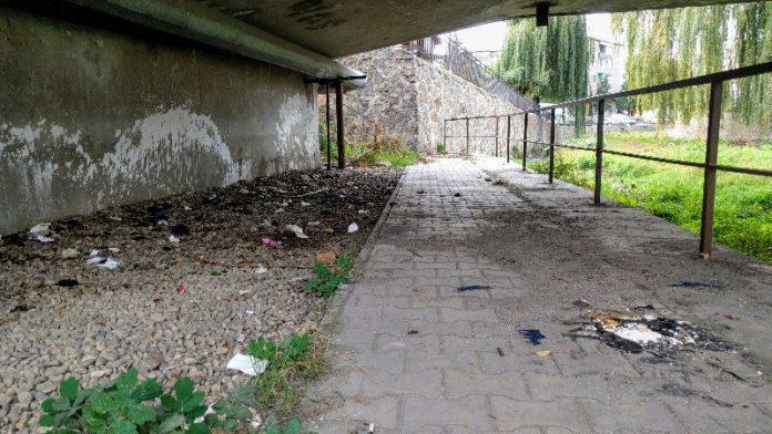 Știați că în Aleșd sub pod e wc-ul public?