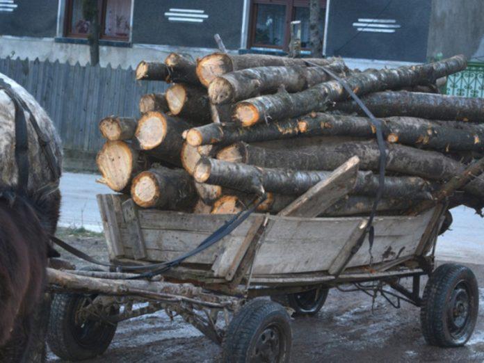 căruța lemne