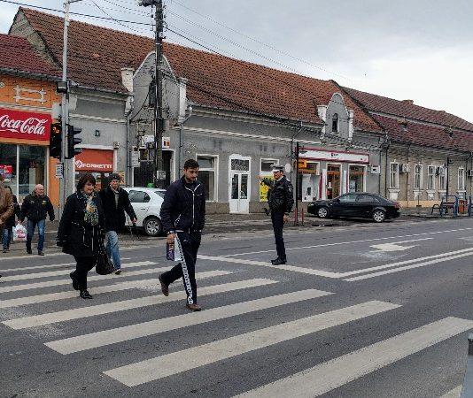 poliția Aleșd zebră