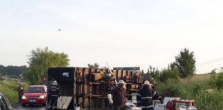 Un autocamion încărcat cu stupi cu albine, răsturnat lângă Băile Felix ~2-800x546
