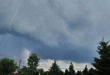cod galben furtună-800x599