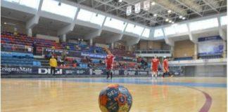 handbal minge-800x557