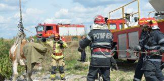 Vacă salvată dintr-un canal de către pompieri --->>> http://bit.ly/2Ju4VIs