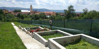 cimitir particular din Aleșd 2 -800x450