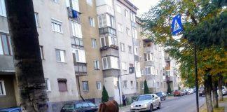 cal trafic Aleșd~2-800x554