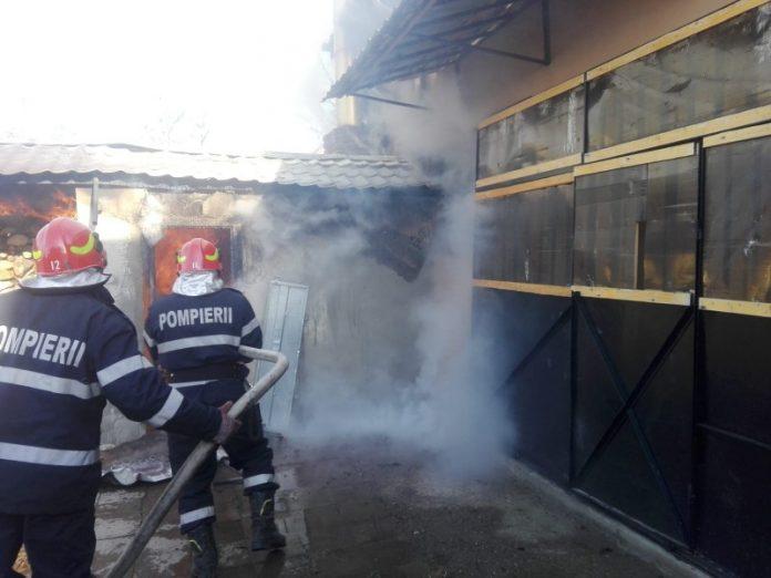 incendiu Aleșd-800x600