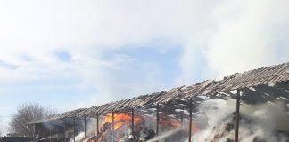 ISU BH -Incendiu Berechiu 4~2-800x597