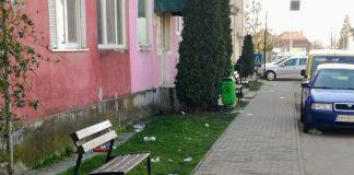 gunoi in orașul Aleșd 2