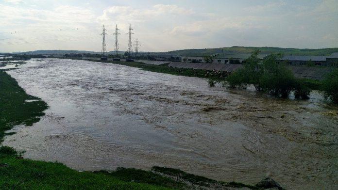 inundați cod
