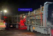 bușteni confiscați de polițiștii din Borod