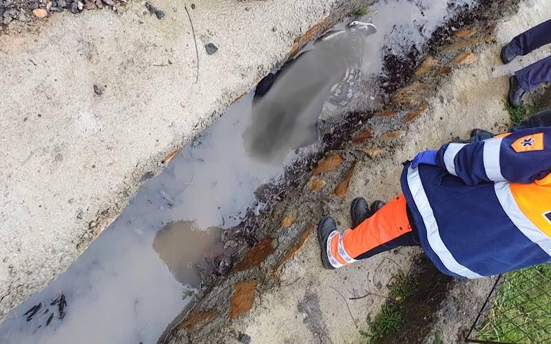 Femeie găsită moartă într-un șanț din Borod