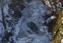 Râu înghețat