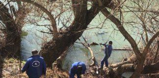 Administrația Bazinală de Apă Crișuri a început igiernizarea cursurilor de apă