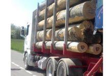 mașină lemne