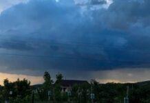 Cod galben de furtună Aleșd