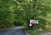 drumul dintre Voievozi si Pădurea Neagră 3