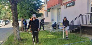 Curățenie parc Aleșd 1