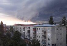 Cod galben furtună Aleșd