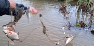 Plasă pescuit