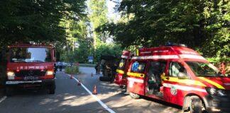 Camion cu lemne răsturnat între Pădurea Neagră și Aleșd 1