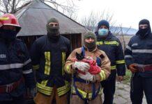 pisică salvată de pompierii din Aleșd