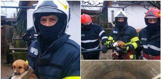 Pompierii au salvat un cățel căzut într-o fântână
